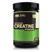 Optimum Nutrition Micronized Creatine 300g